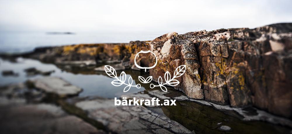 Berg och vatten med logon bärkraft.ax