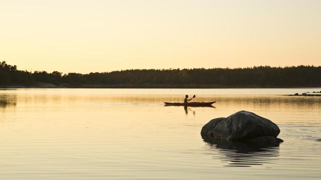 Silhuett av person i solnedgång som paddlar kajak.