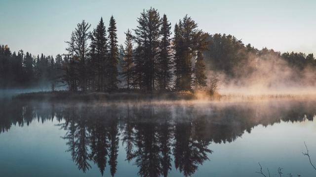 Spegelblankt dimmigt vatten.