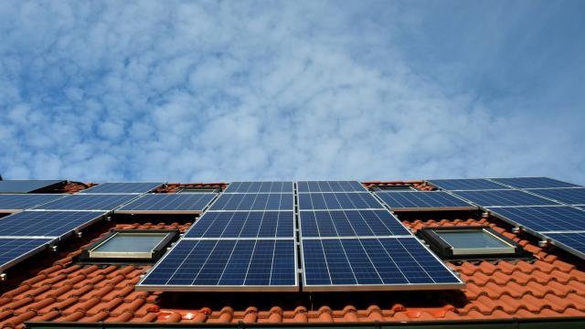 Bild på ett tak med solceller installerade